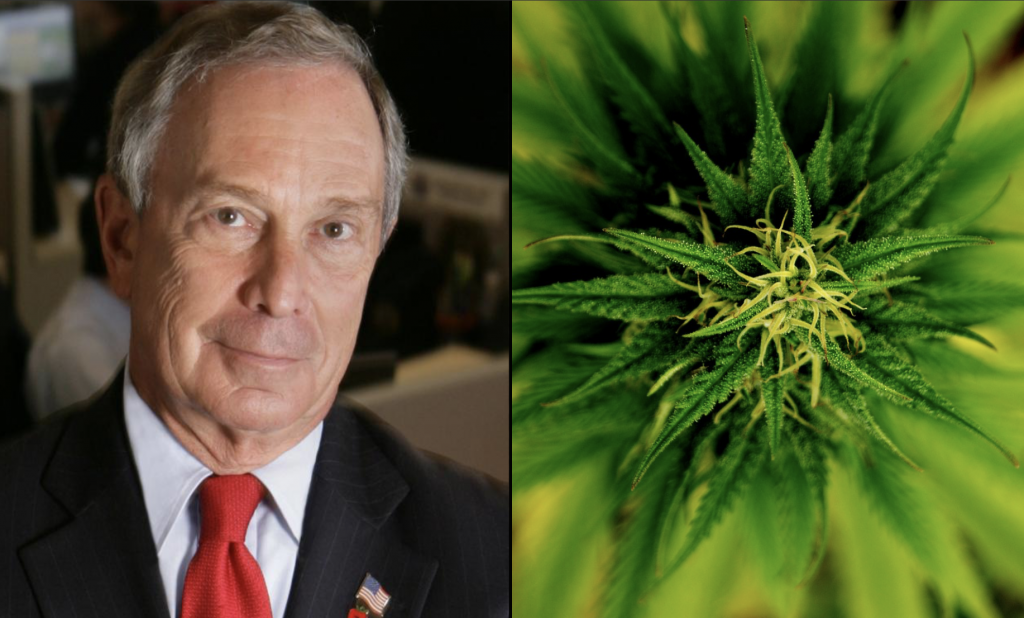 Michael Bloomberg Backs Decriminalization As Marijuana Views Evolve Amid Presidential Run | Marijuana Moment