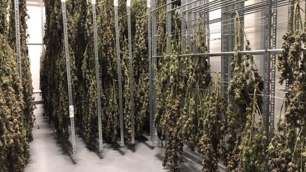 New medical marijuana bill could bring Utah closer to Prop 2
