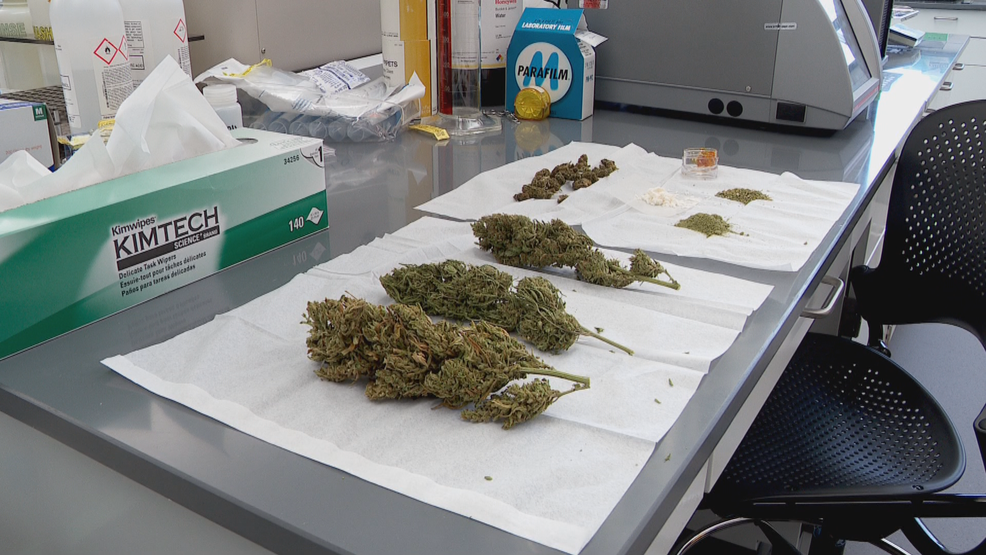 State lab ready to test Utah's first crop of medical cannabis